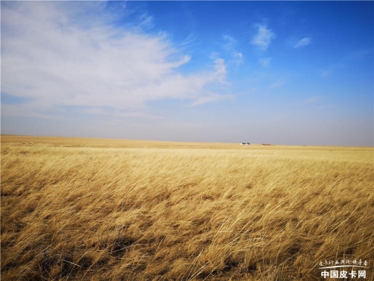 """新·探微皮卡人——牧羊人的草原""""骏马"""""""